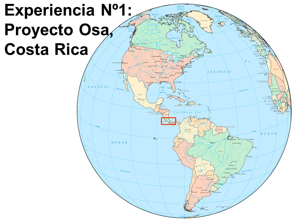 Experiencia Nº1: Proyecto Osa, Costa Rica