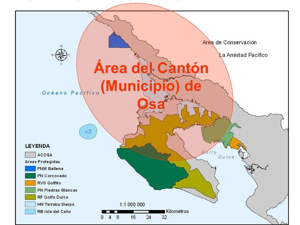 Área del Cantón (Municipio) de Osa