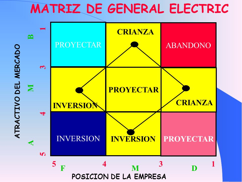 MATRIZ DE GENERAL ELECTRIC
