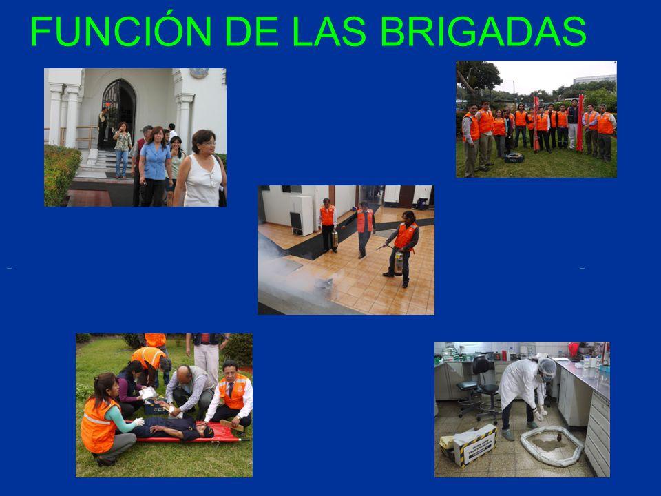 FUNCIÓN DE LAS BRIGADAS