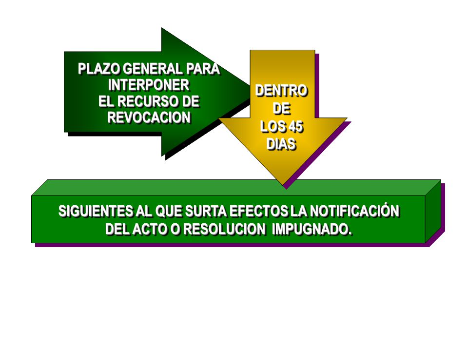 PLAZO GENERAL PARA INTERPONER EL RECURSO DE REVOCACION
