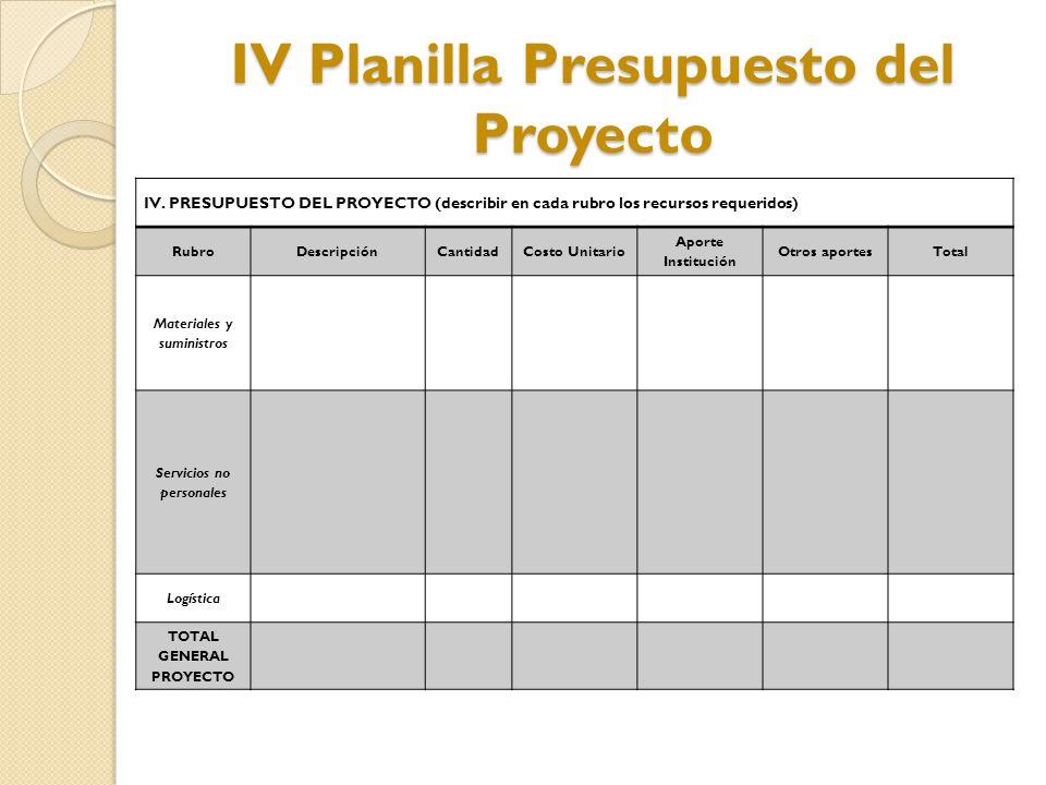IV Planilla Presupuesto del Proyecto