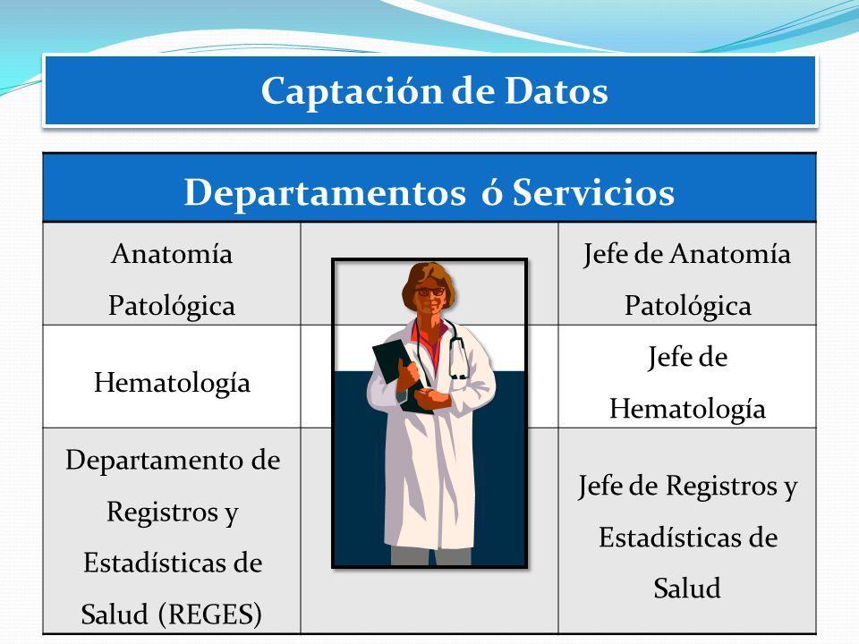 Departamentos ó Servicios