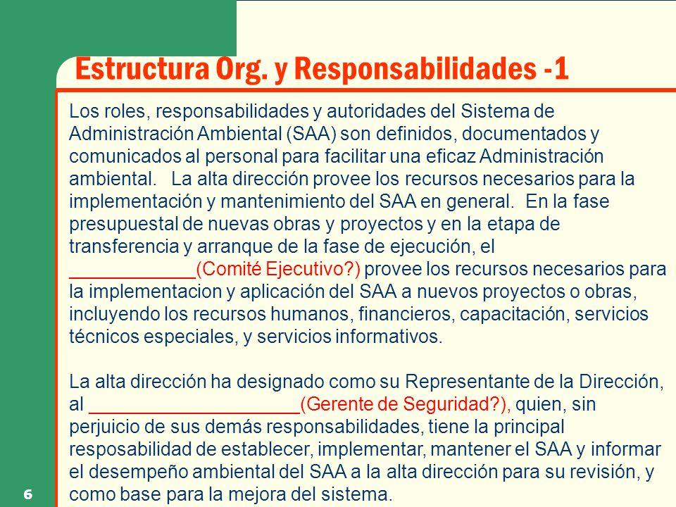 Estructura Org. y Responsabilidades -1