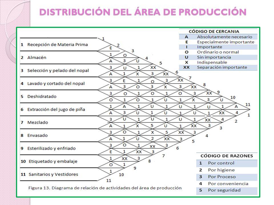 DISTRIBUCIÓN DEL ÁREA DE PRODUCCIÓN