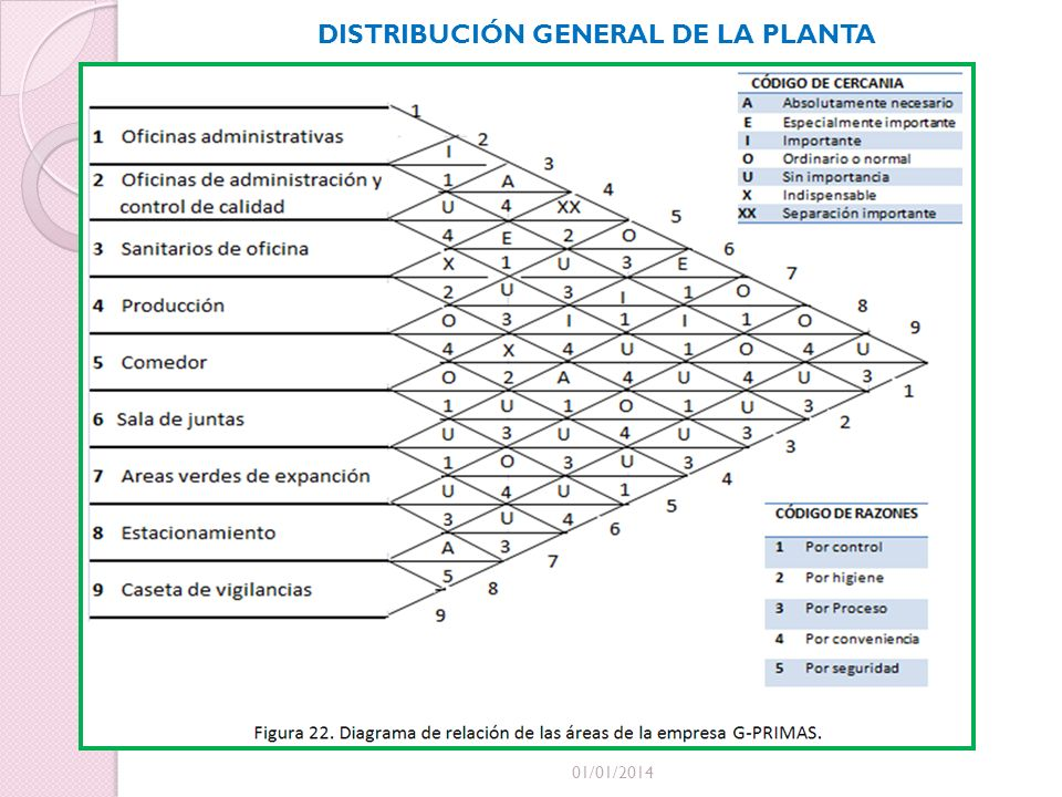 DISTRIBUCIÓN GENERAL DE LA PLANTA