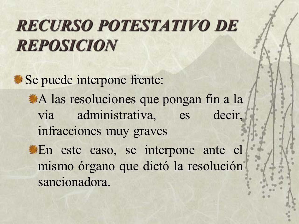 RECURSO POTESTATIVO DE REPOSICION