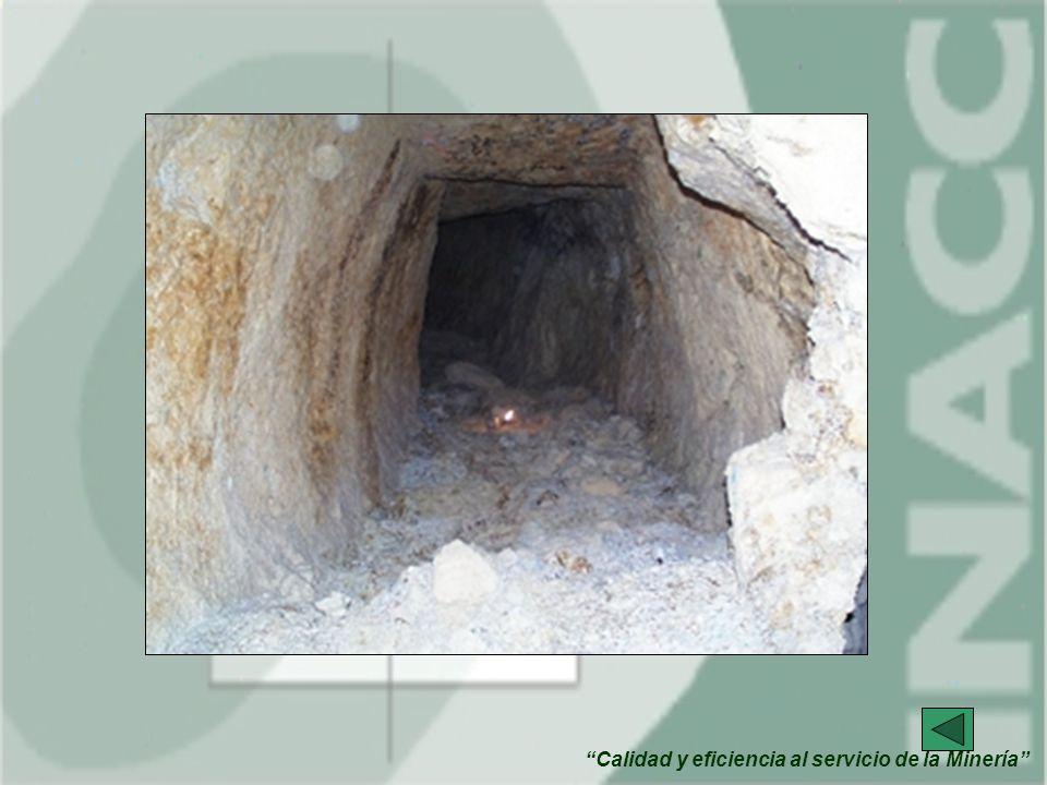 Calidad y eficiencia al servicio de la Minería