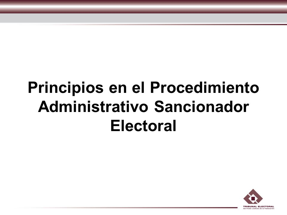 Principios en el Procedimiento Administrativo Sancionador Electoral