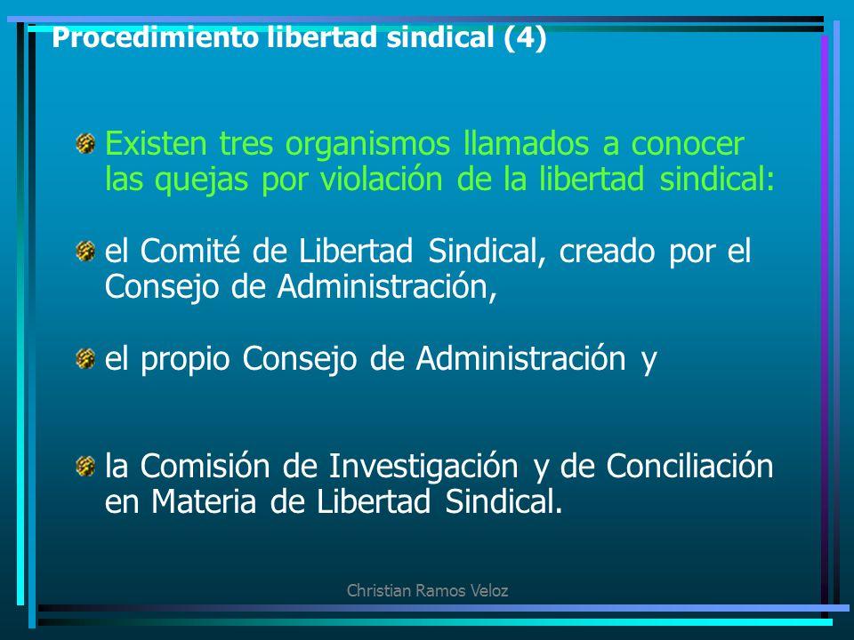 Procedimiento libertad sindical (4)