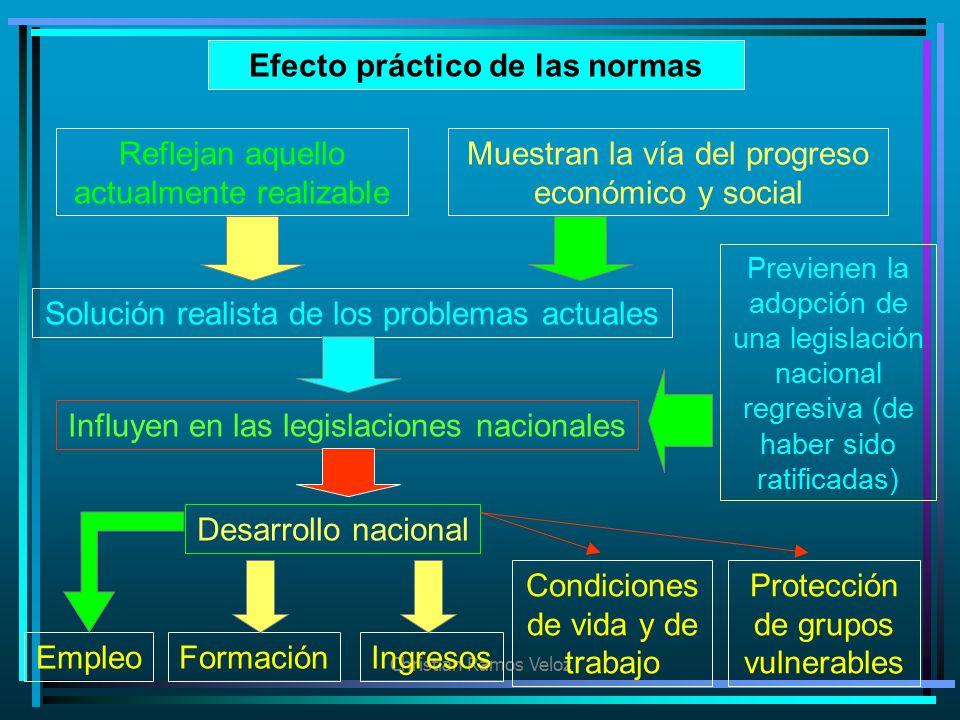 Efecto práctico de las normas