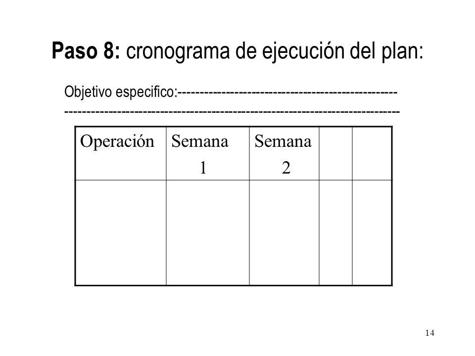 Paso 8: cronograma de ejecución del plan:
