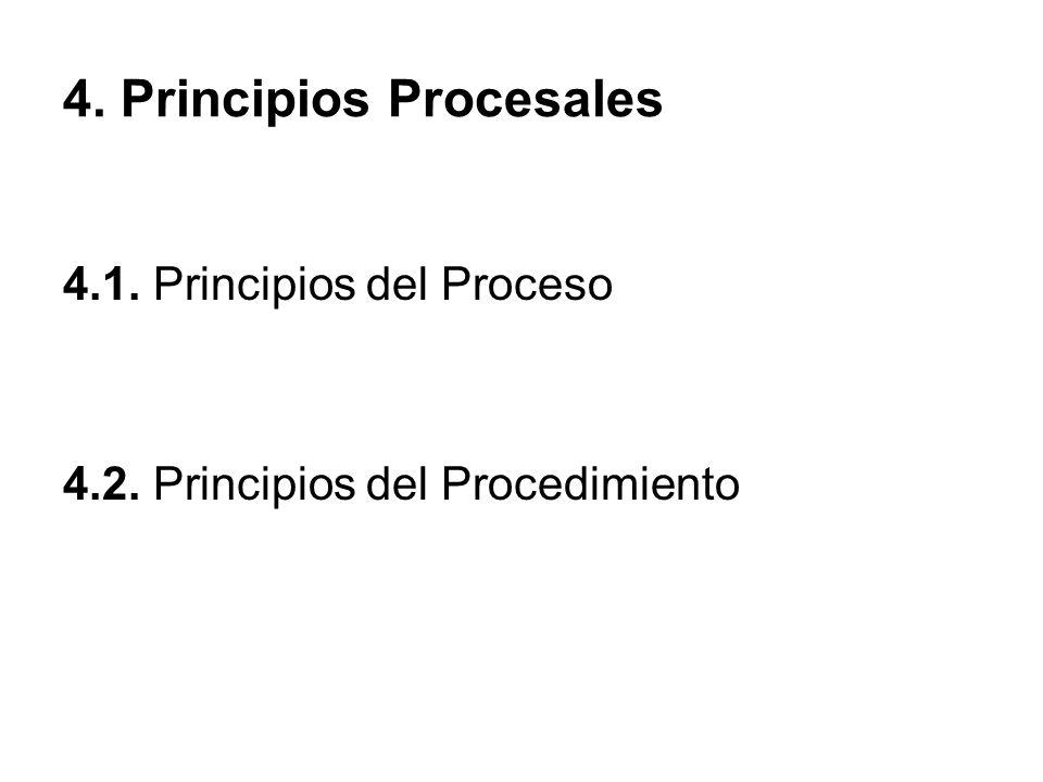 4. Principios Procesales