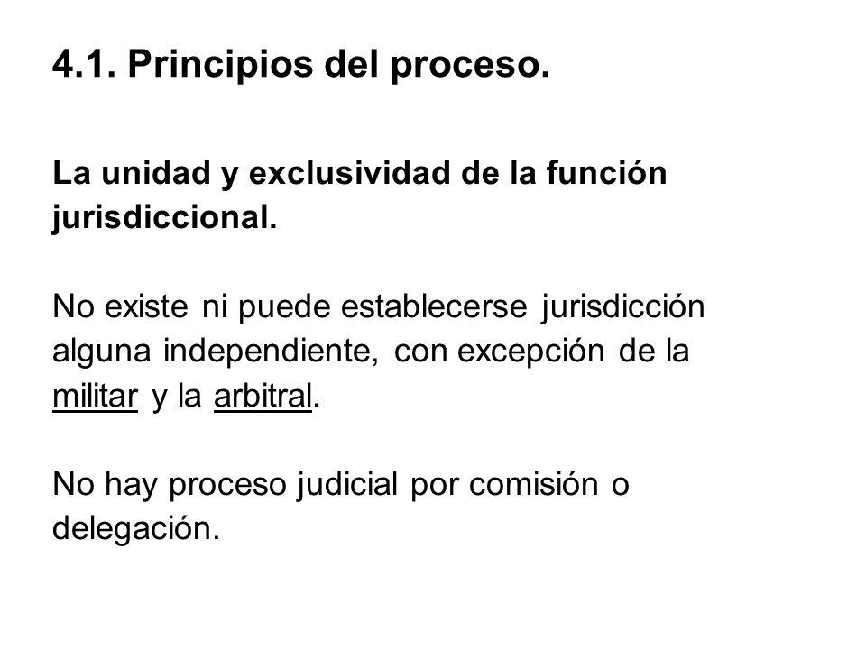 4.1. Principios del proceso.