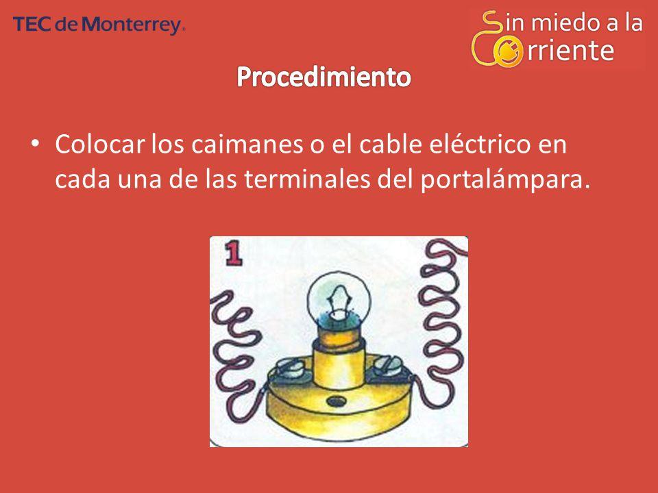 Procedimiento Colocar los caimanes o el cable eléctrico en cada una de las terminales del portalámpara.