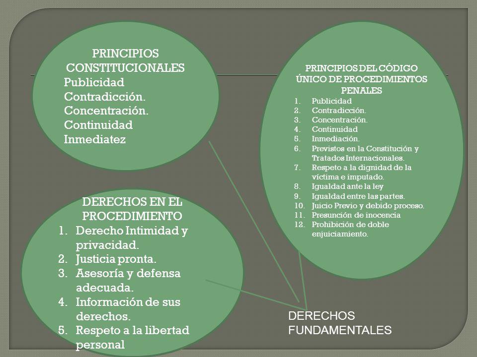 PRINCIPIOS CONSTITUCIONALES Publicidad Contradicción. Concentración.