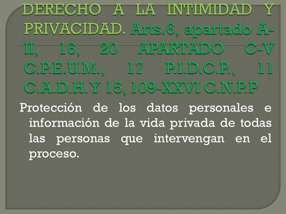 DERECHO A LA INTIMIDAD Y PRIVACIDAD. Arts