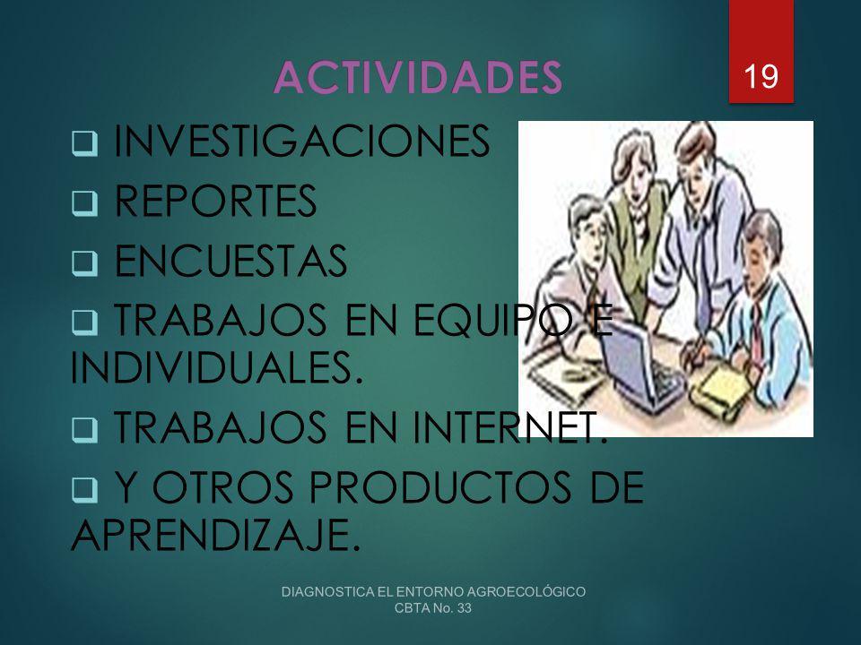 DIAGNOSTICA EL ENTORNO AGROECOLÓGICO CBTA No. 33