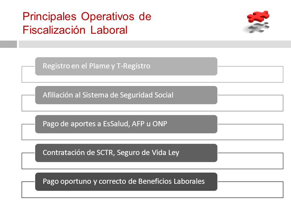 Principales Operativos de Fiscalización Laboral