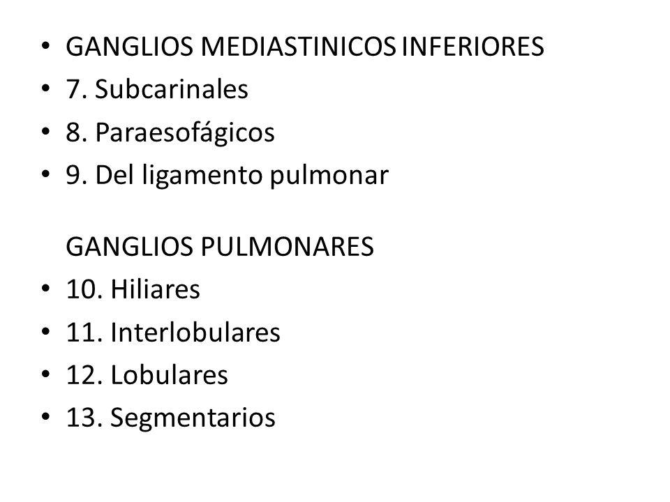 GANGLIOS MEDIASTINICOS INFERIORES