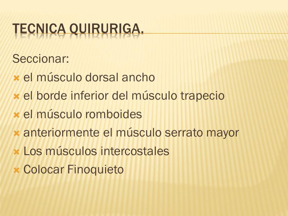 Tecnica quiruriga. Seccionar: el músculo dorsal ancho