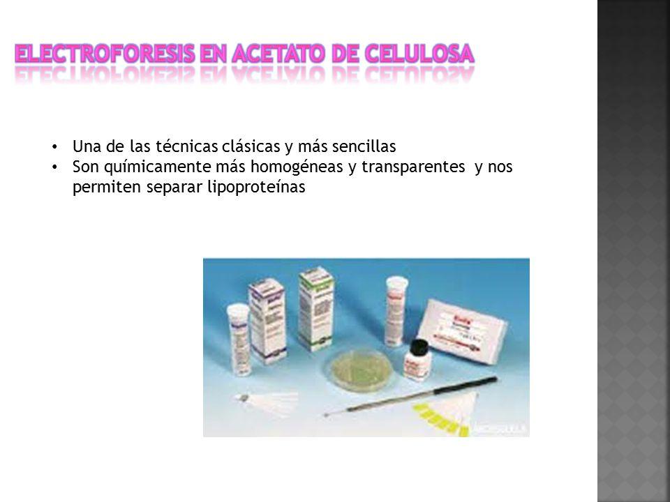 Electroforesis en acetato de celulosa