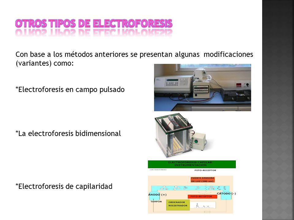 Otros tipos de Electroforesis
