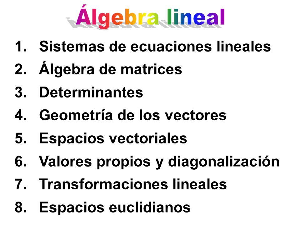 Álgebra lineal Sistemas de ecuaciones lineales. Álgebra de matrices. Determinantes. Geometría de los vectores.