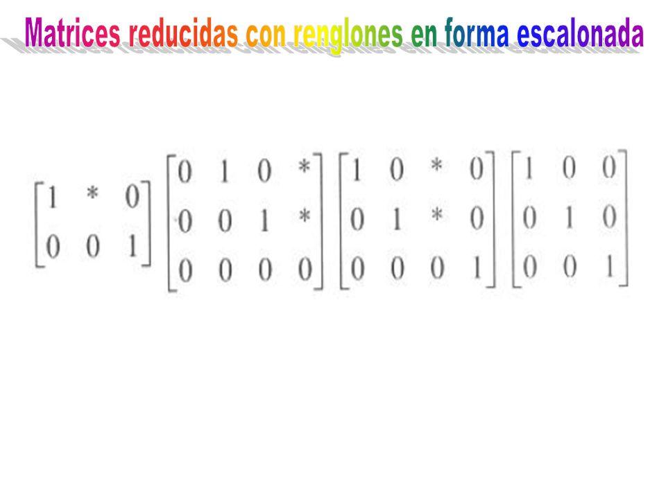 Matrices reducidas con renglones en forma escalonada
