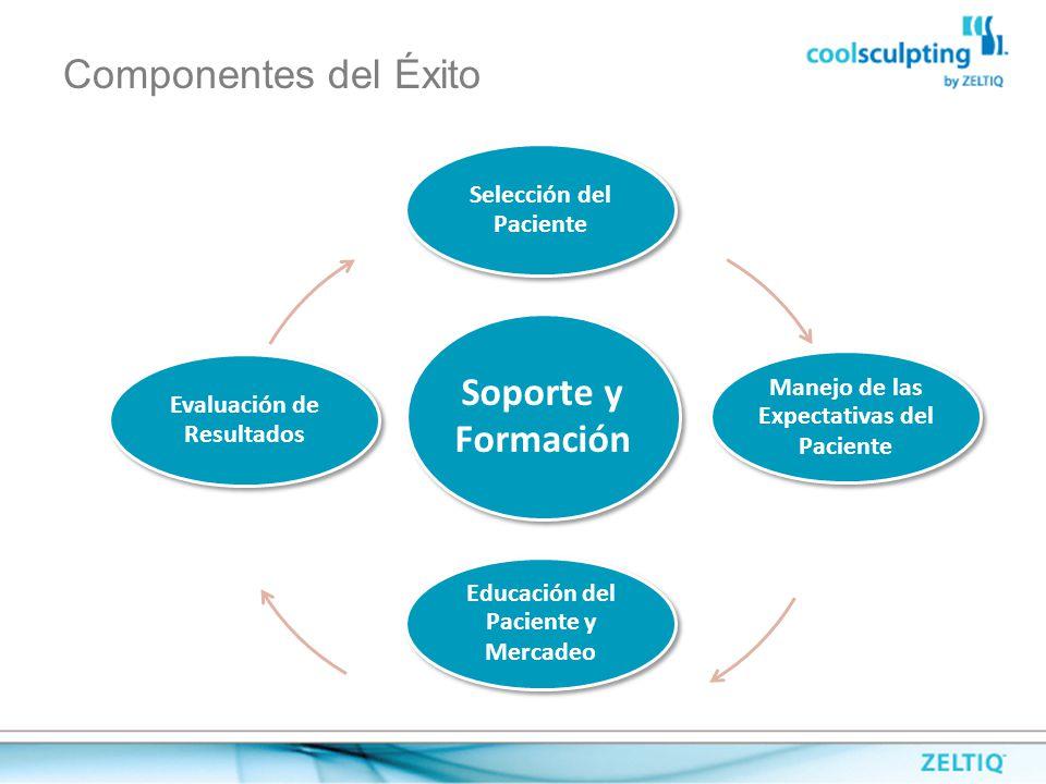 Componentes del Éxito Soporte y Formación