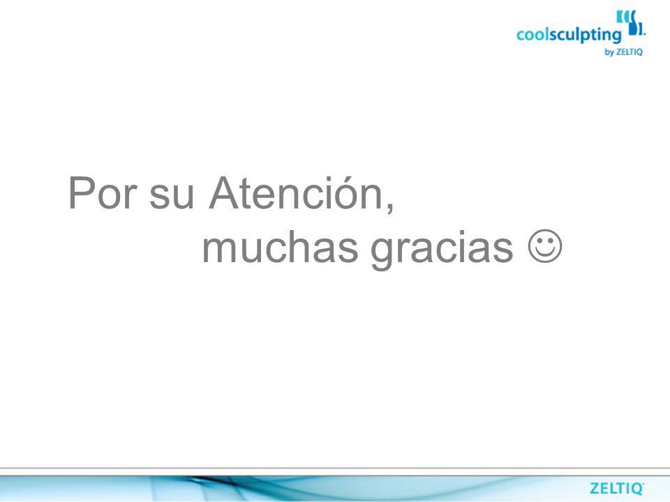 Por su Atención, muchas gracias 