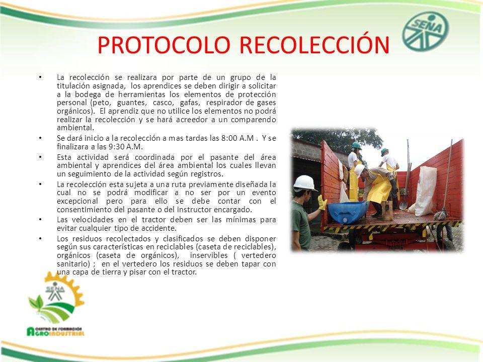 PROTOCOLO RECOLECCIÓN