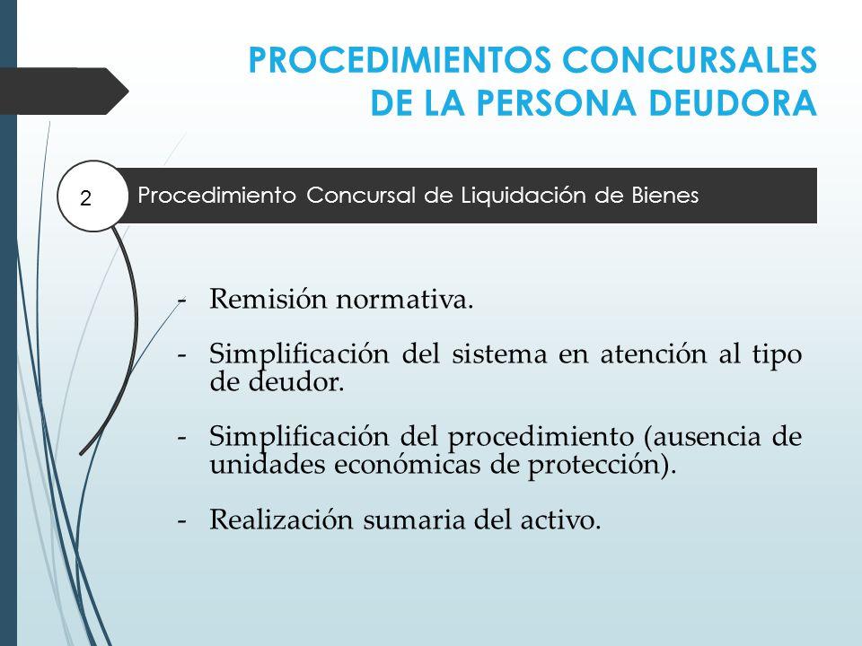 PROCEDIMIENTOS CONCURSALES DE LA PERSONA DEUDORA