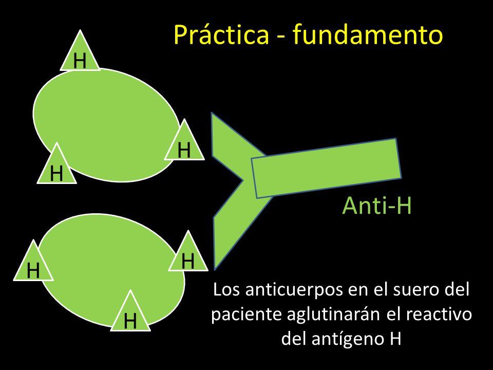 Práctica - fundamento Anti-H H H H H H H