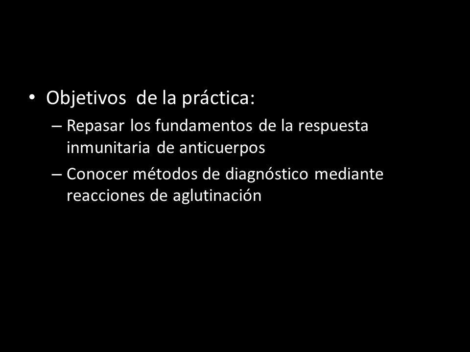 Objetivos de la práctica: