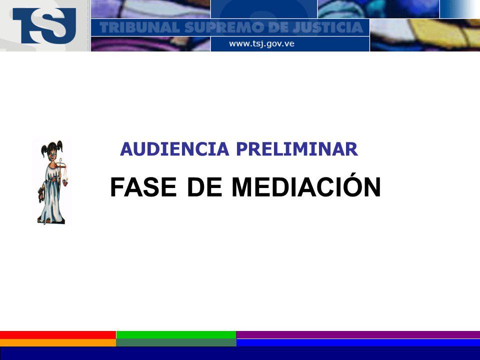 AUDIENCIA PRELIMINAR FASE DE MEDIACIÓN