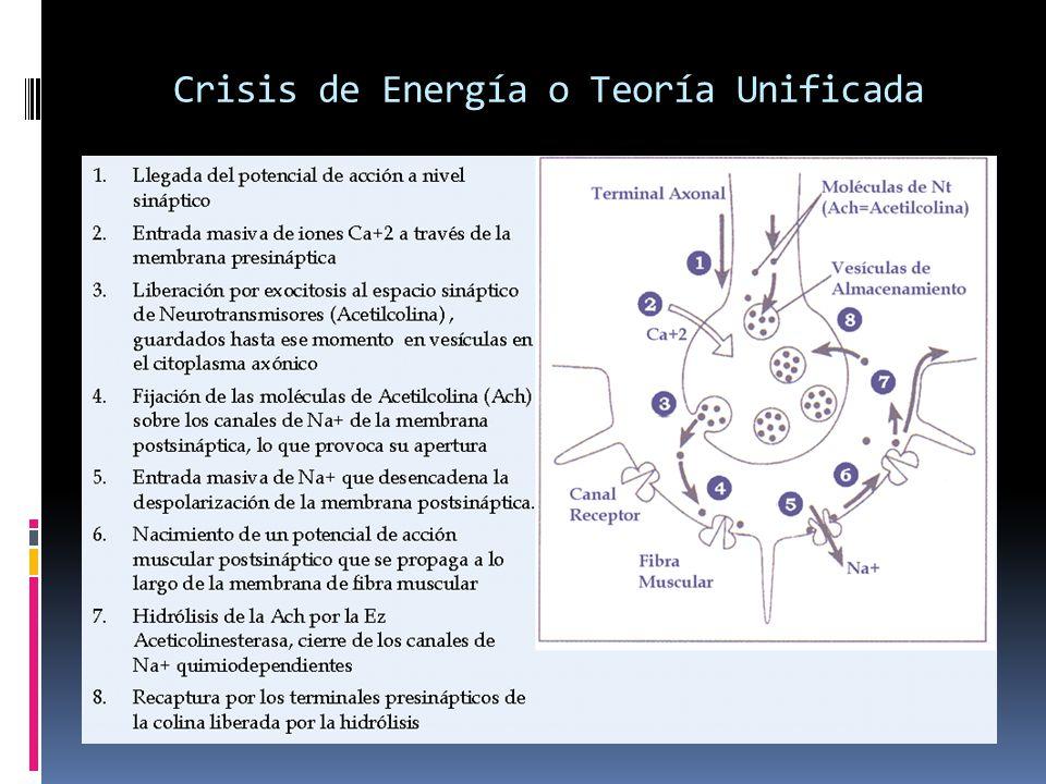 Crisis de Energía o Teoría Unificada