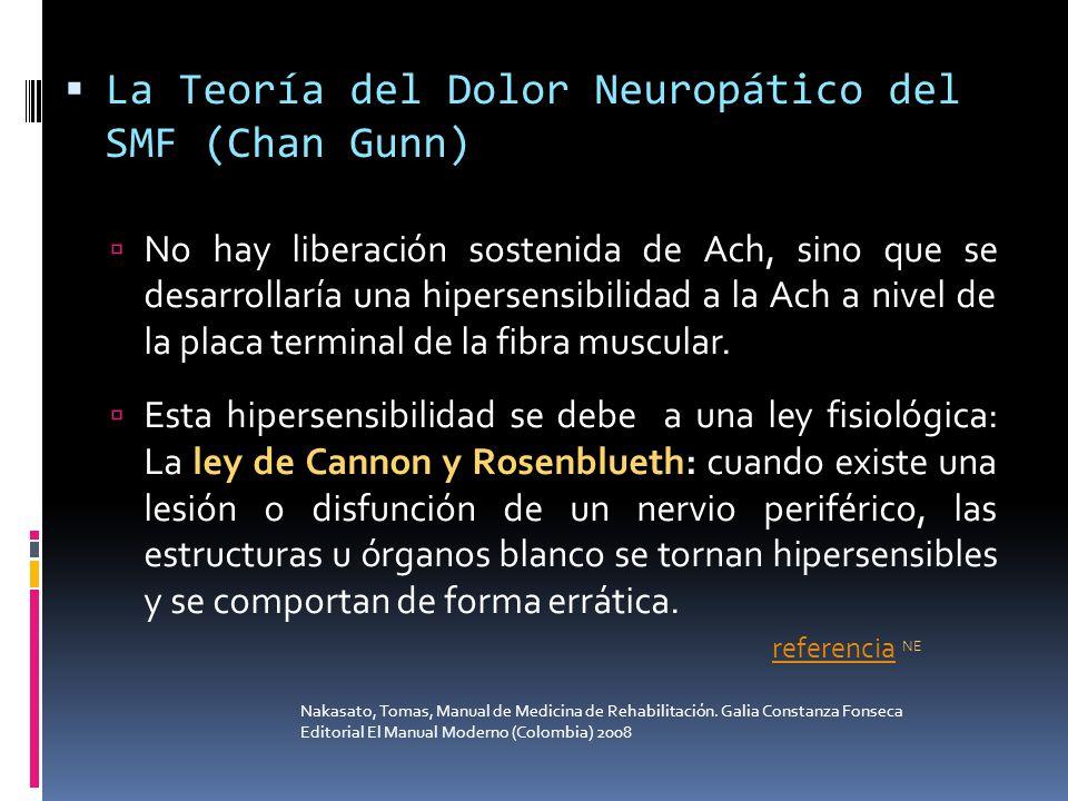 La Teoría del Dolor Neuropático del SMF (Chan Gunn)