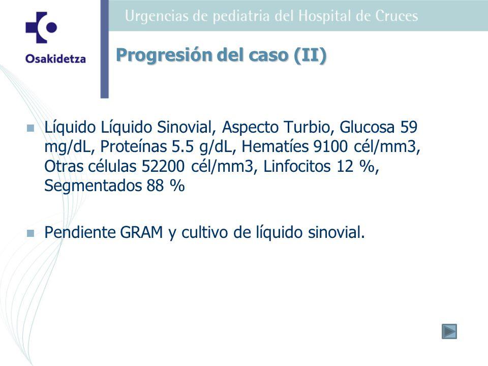 Progresión del caso (II)