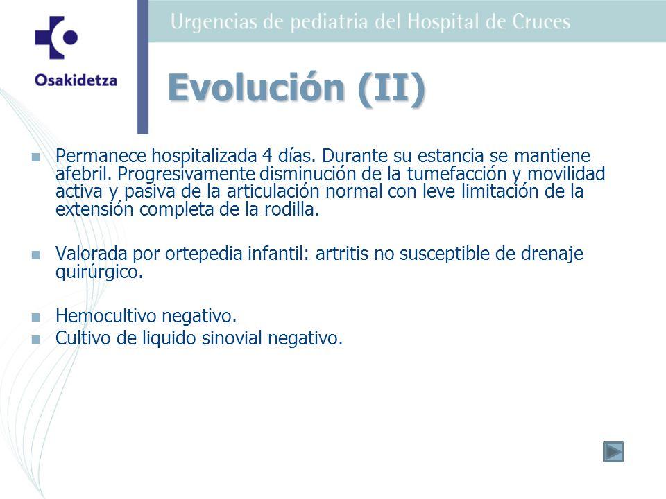 Evolución (II)