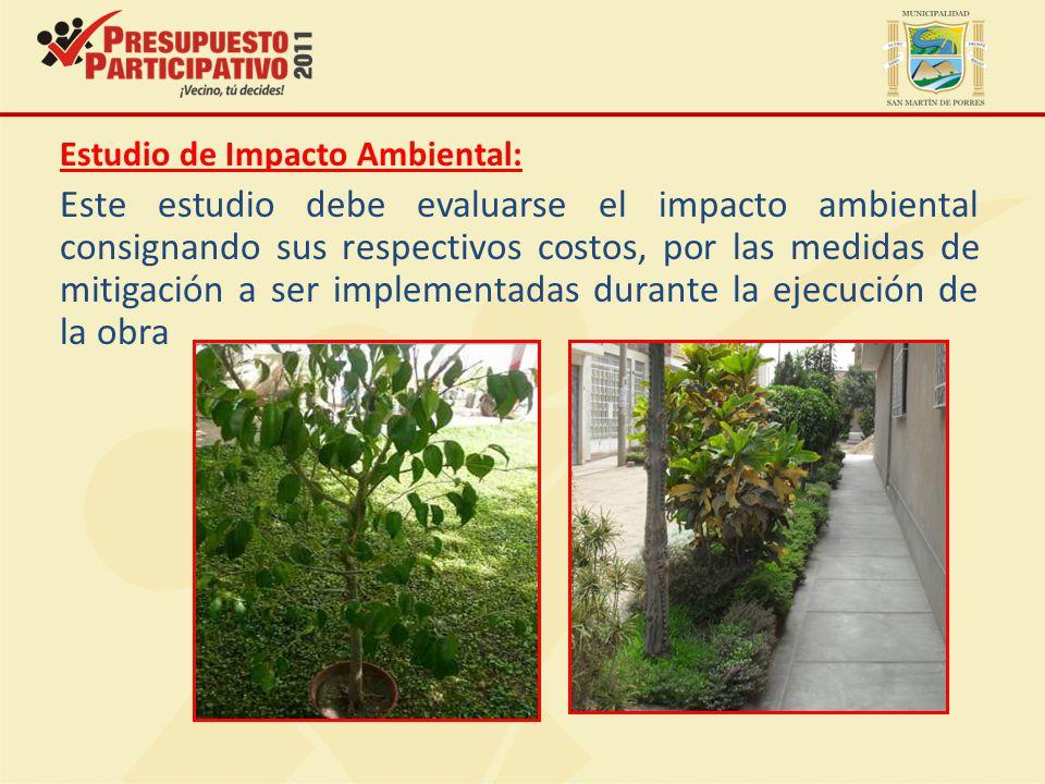 Estudio de Impacto Ambiental:
