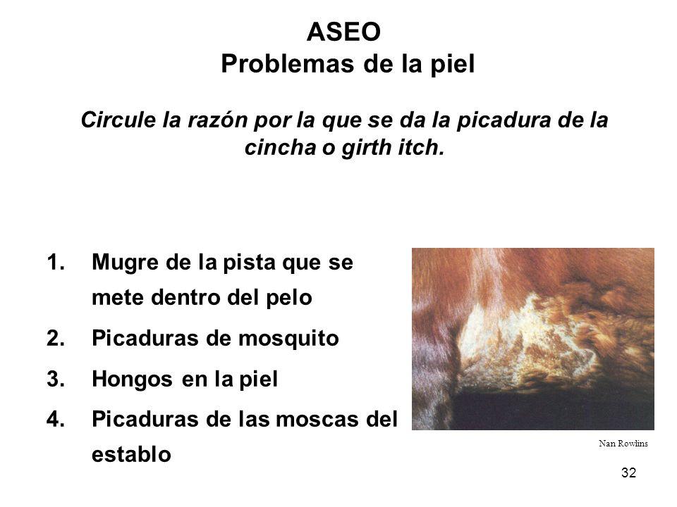 ASEO Problemas de la piel Circule la razón por la que se da la picadura de la cincha o girth itch.