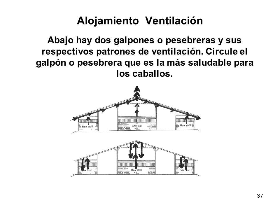 Alojamiento Ventilación