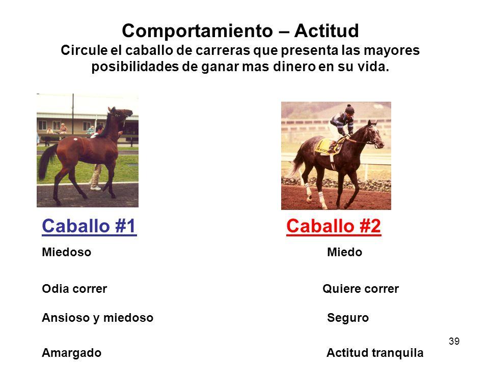 Comportamiento – Actitud Circule el caballo de carreras que presenta las mayores posibilidades de ganar mas dinero en su vida.