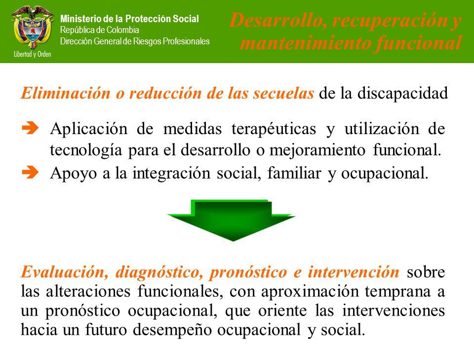 Desarrollo, recuperación y mantenimiento funcional