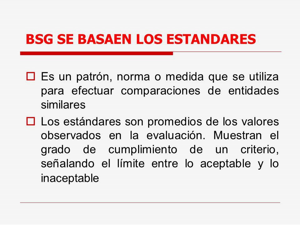 BSG SE BASAEN LOS ESTANDARES