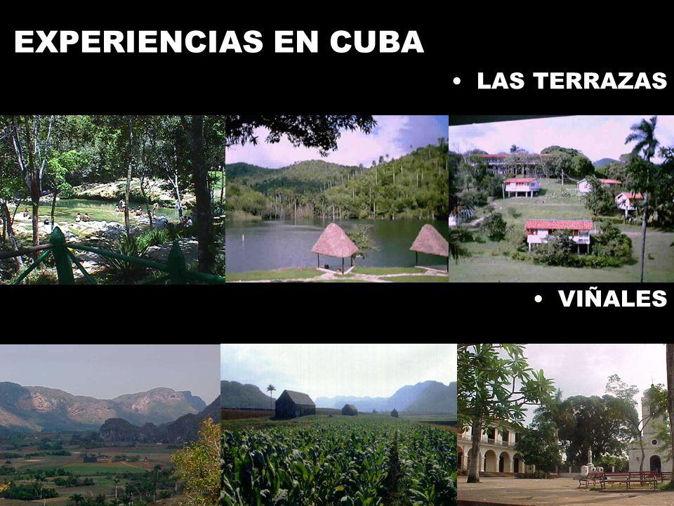 EXPERIENCIAS EN CUBA LAS TERRAZAS VIÑALES