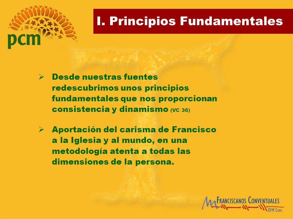 Desde nuestras fuentes redescubrimos unos principios fundamentales que nos proporcionan consistencia y dinamismo (VC 36)