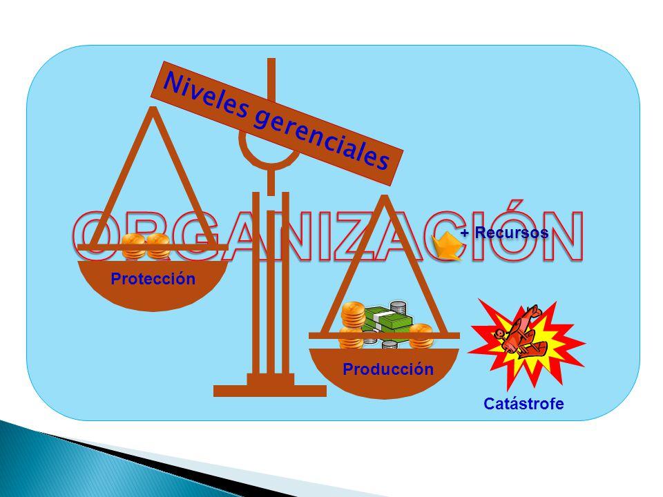 ORGANIZACIÓN Niveles gerenciales + Recursos Protección Producción