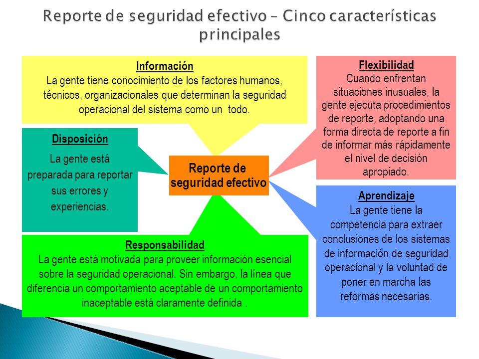 Reporte de seguridad efectivo – Cinco características principales